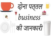 Dona Pattal business in Hindi