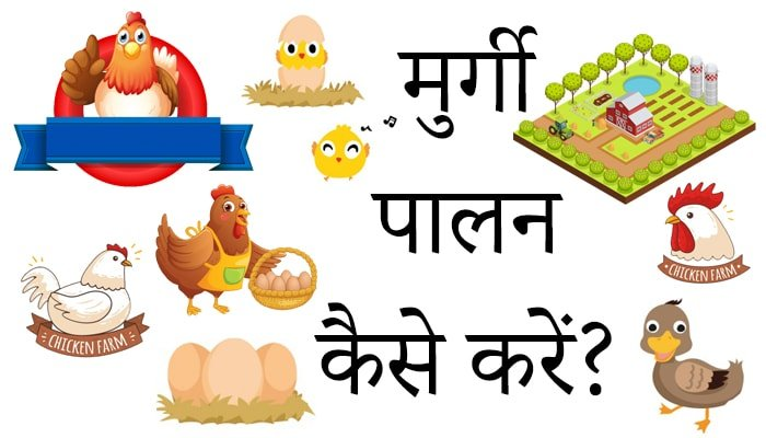 Poultry Farming business plan in Hindi